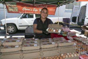 Clara's Egg Farm