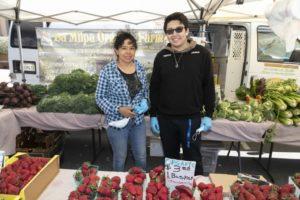 La Milpa Organic Farm